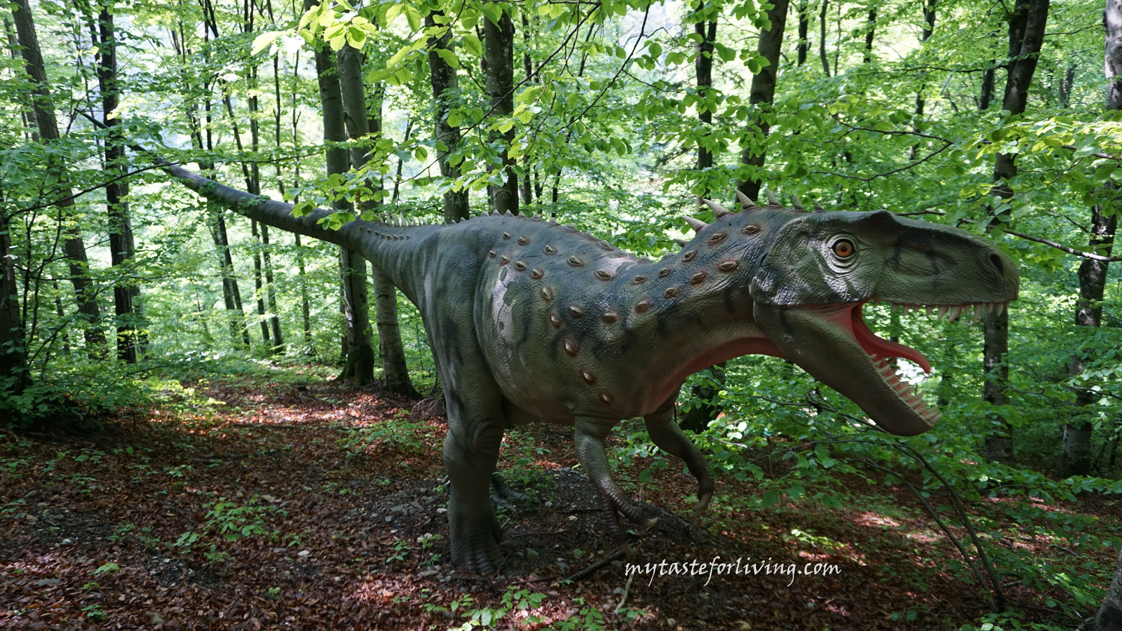 Dino Park in Rasnov, Romania is a recreation area with a museum part both indoors and outdoors, and is the largest park in southeastern Europe.