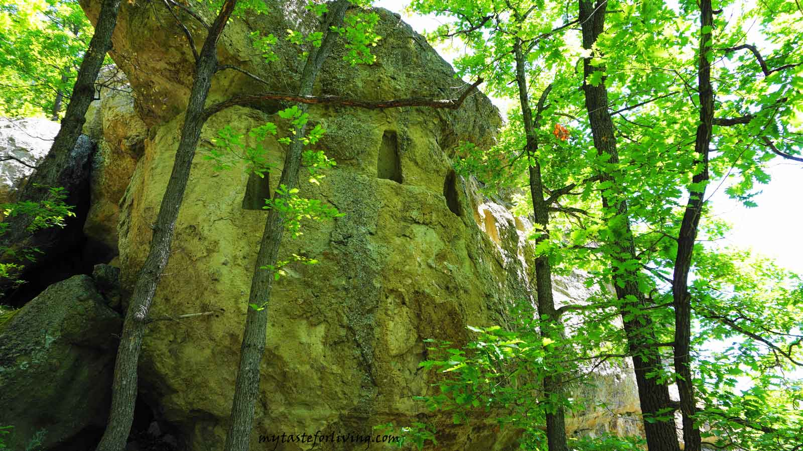 The thracian rock sanctuaries with mysterious trapezoidal rock niches carved in them are typical of the Eastern Rhodopes. The forests above the village of Nochevo are full of similar niches and small caves (like Kodja yin) and sharapani.
